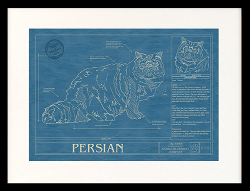 Home page animal blueprint company cat breeds malvernweather Images